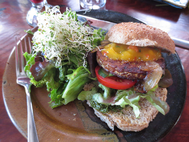 tempehburger.spinnn2013